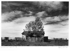 Homestead, Catron County, NM, 1/7, 1988
