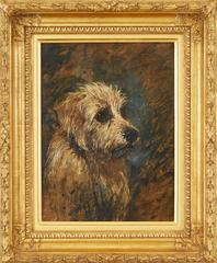 Head Study of a Mustard Dandie Dinmont Terrier