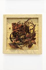Joe Walters - Still Life with Fallen Nest IV