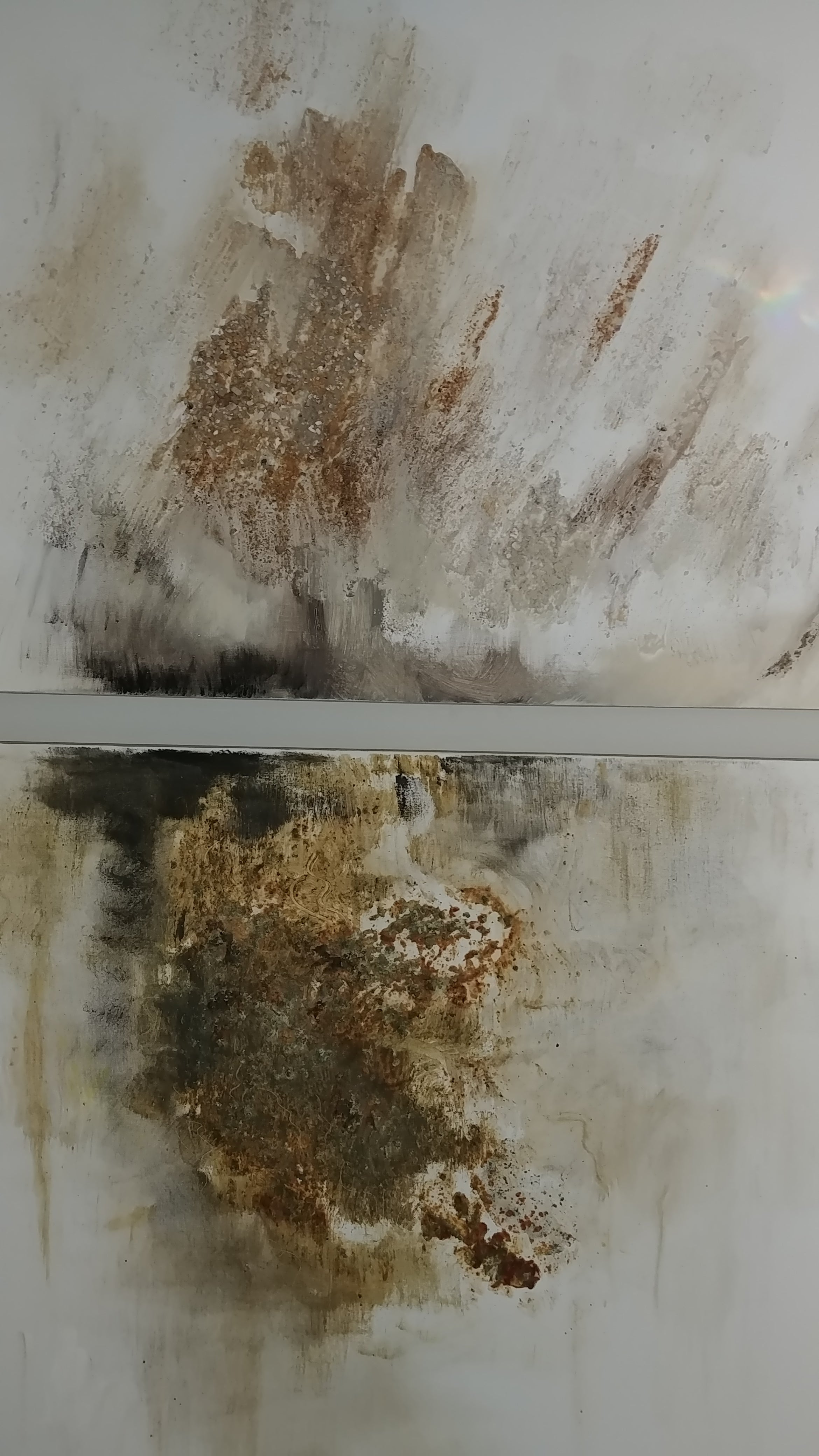 Black Gold- diptych 48 X 96 Mixed Media
