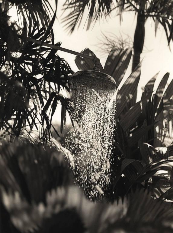 Miami Shower