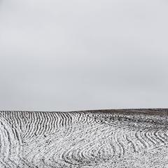 Ploughed Field No.4
