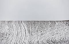 Ploughed Field No. 3