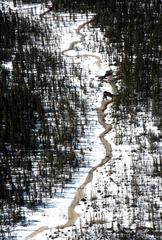 Eska Tannin River I