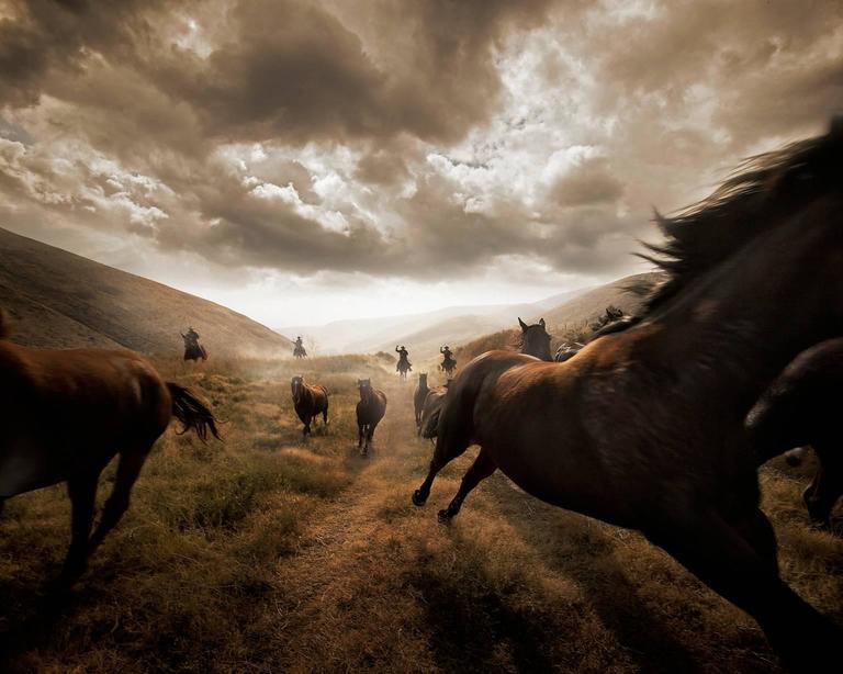 Chris Gordaneer - Horses 1