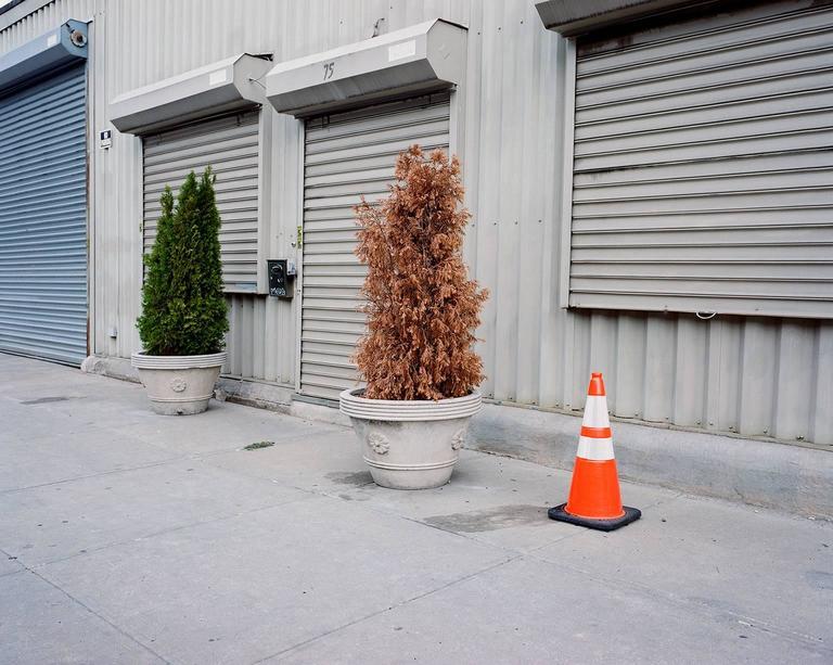 Caution, Brooklyn, NY