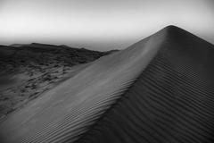 Wahiba Sands #1
