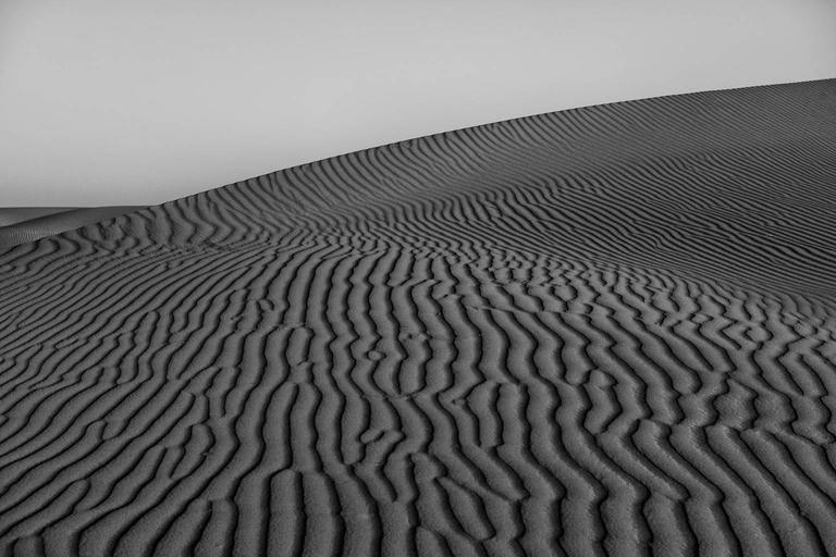 Wahiba Sands #2