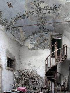 Abandoned Aviary