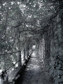 Douglas Busch - Covered Walkway, Verona