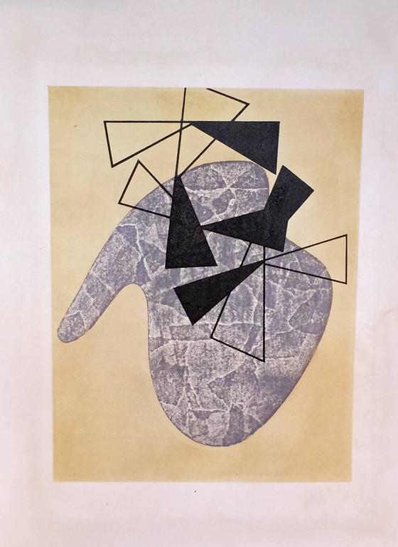 JEAN ARP - SONIA DELAUNAY - ALBERTO MAGNELLI - SOPHIE TAEUBER-ARP. For Sale 3