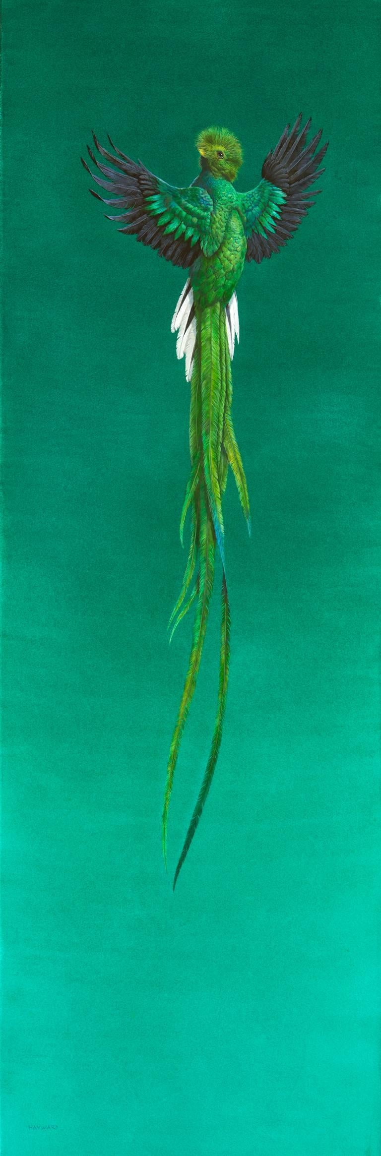 Tim Hayward Figurative Painting - Soar - Green