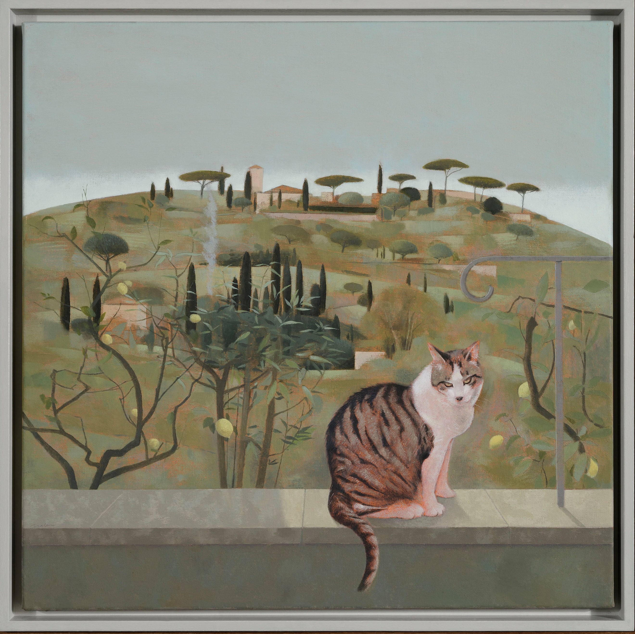 Hillside and Cat at Fiesole
