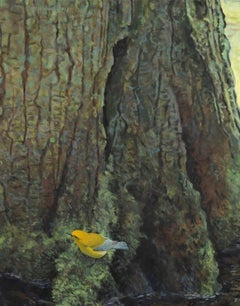 Spring - Prothonotary Warbler - 21st century - Contemporary - Oil - Bird