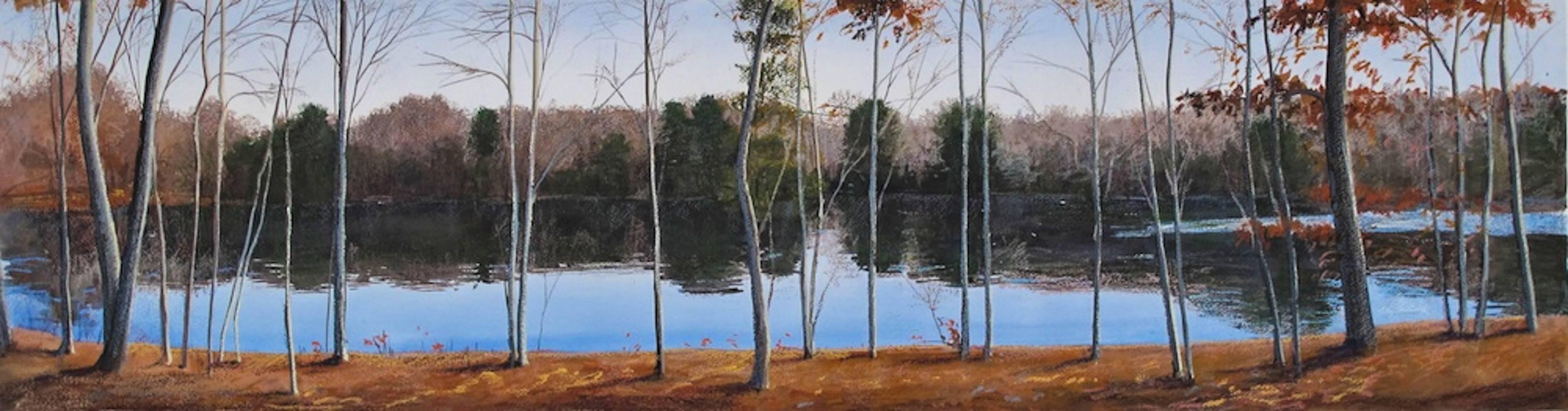 Pond Evening