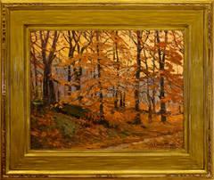 """Evening Woods"""