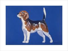 China Dog / POP photorealism pastel