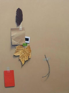 Still Life with Feather