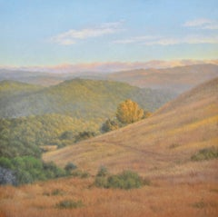 THE RIDGE: EVENING / contemporary - warm rolling California hills - 4'  square