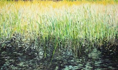 Reeds and Grass