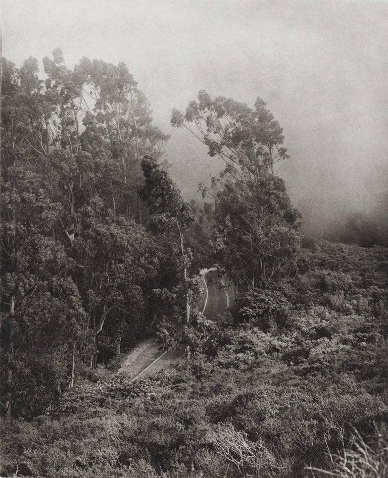 Unai San Martin Landscape Print - Road to Muir Beach