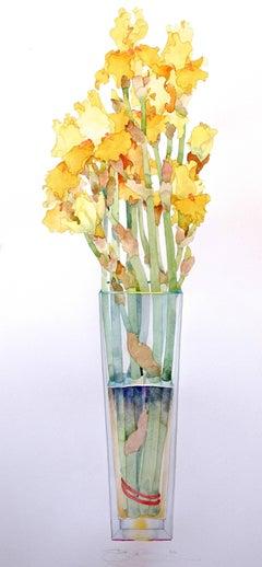 Yellow Iris in Tall Vase / watercolor