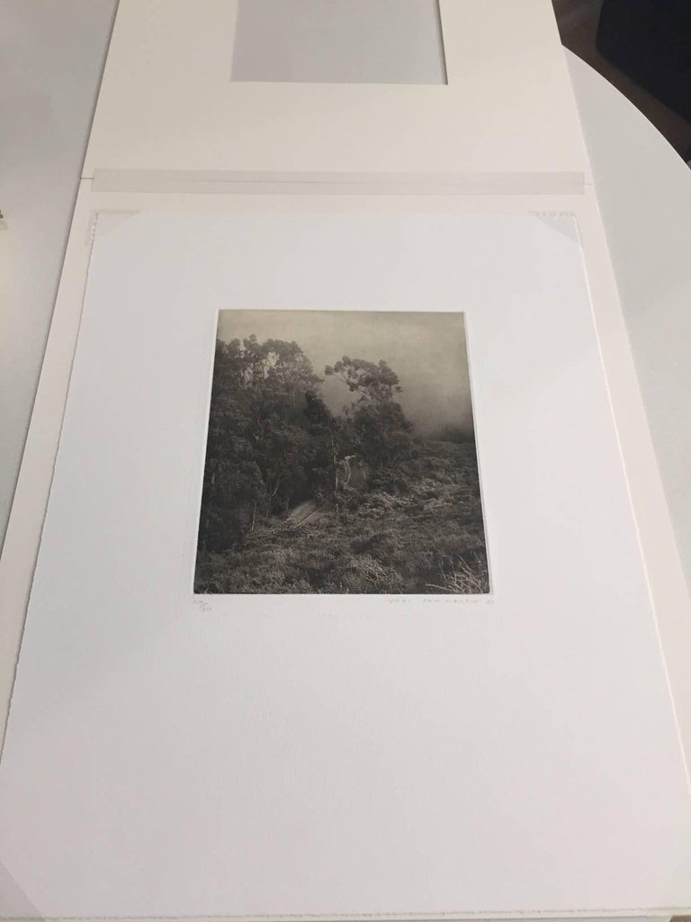Road to Muir Beach - Black Landscape Print by Unai San Martin