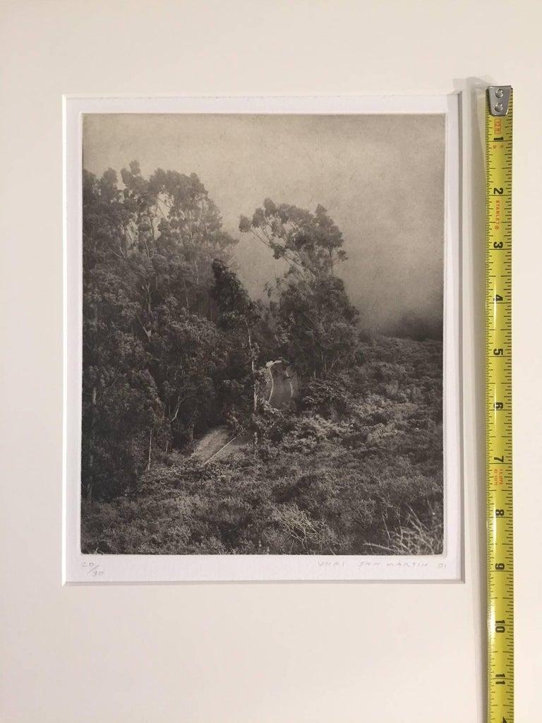 Road to Muir Beach - American Realist Print by Unai San Martin