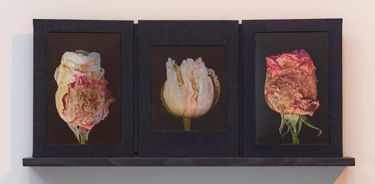'Budding', a mixed media sculptural photographic triptych book created by hand, in an edition of three, as part of a unique  series. Roger Jordan explores abstractions at the edge of the natural world through a body of work focused on clouds, water,