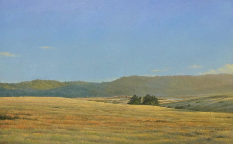 Tamales Bay Fields / oil on canvas