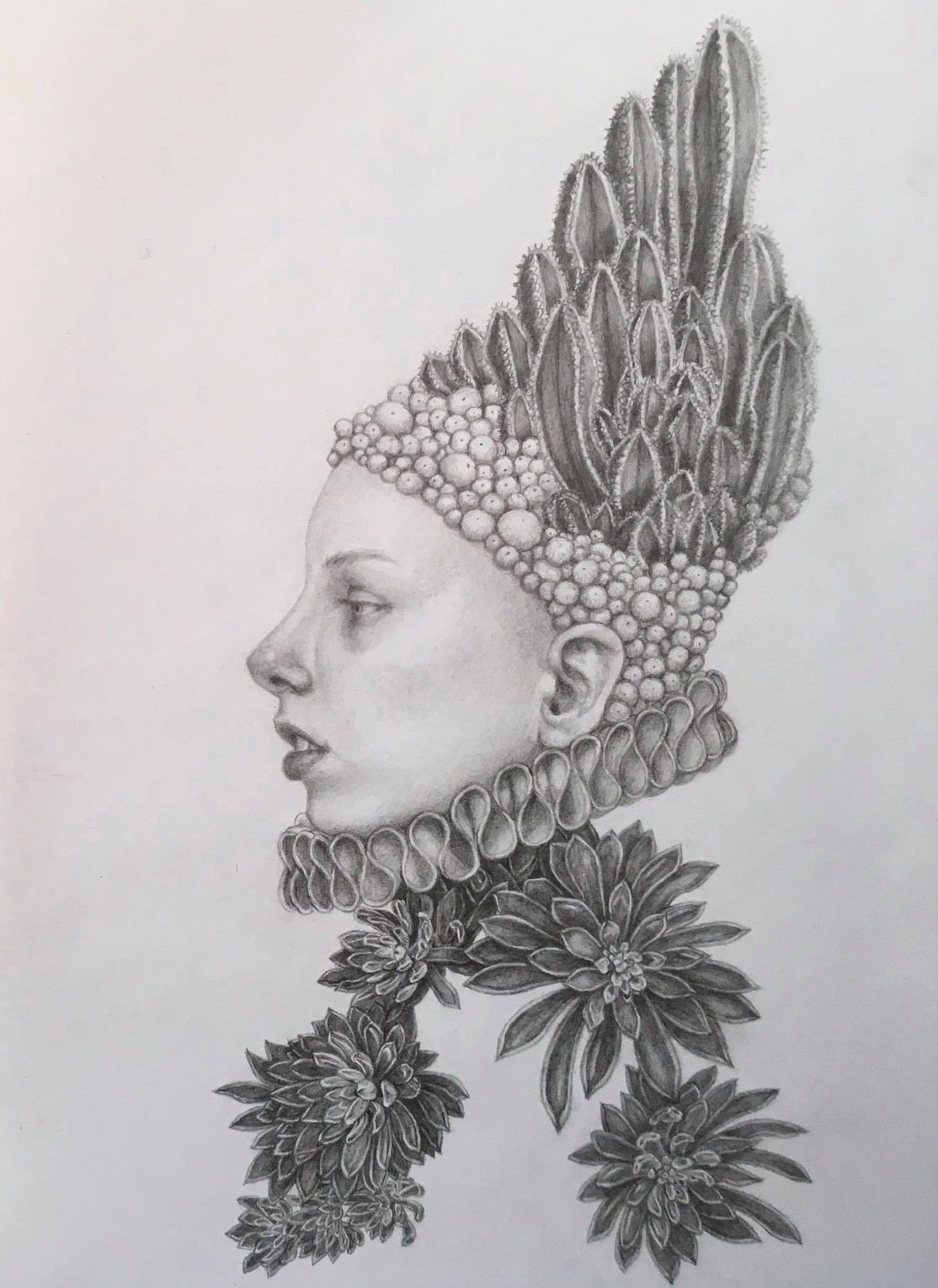 Infanta Dolor - graphite pencil drawing - woman with cactus and succulents