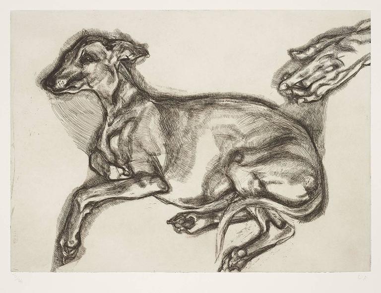 Lucian Freud Animal Print - Pluto Aged Twelve