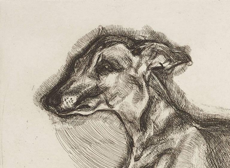 Pluto Aged Twelve - Print by Lucian Freud