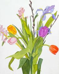 Tulips, Blue Iris