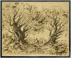 Untitled, Olive Trees Outside Jerusalem