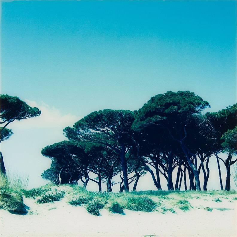 Landscape Beach photograph, mounted on aluminum.