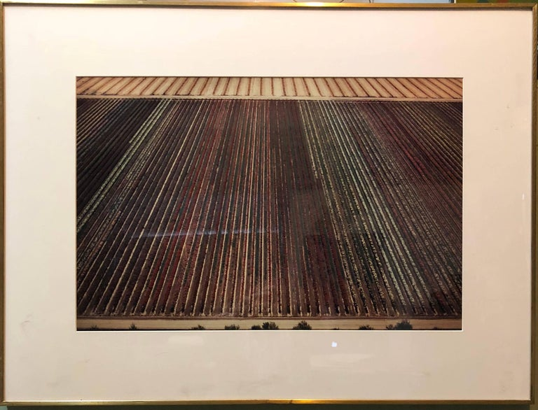 This is an aerial view photograph. As an aerial photographer, MacLean aims to portray the history and evolution of the land from vast agricultural patterns to city grids, recording changes brought about by human intervention and natural
