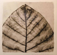 Abstract Elephant Leaf Form Botanical Photograph Print Hand Signed and Numbered
