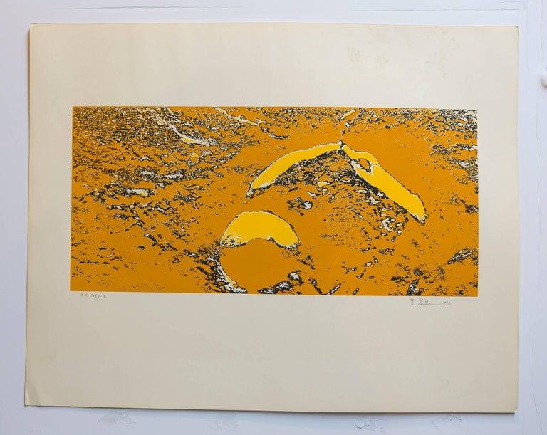 Lunar Landscape Abstract Signed Numbered Screenprint Yellow - Print by Len Gittleman