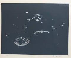 Lunar Landscape Abstract Signed Numbered Screenprint Black