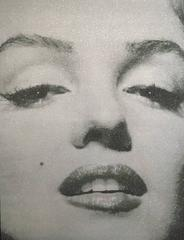 Marilyn Close Up - Atomic Silver