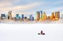 Dog Walker in Central Park Snow