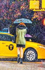 New York: Beautiful Rain