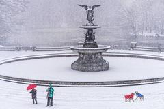 Bethesda Fountain in the Snow