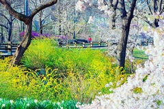 Central Park Runner and Flowers