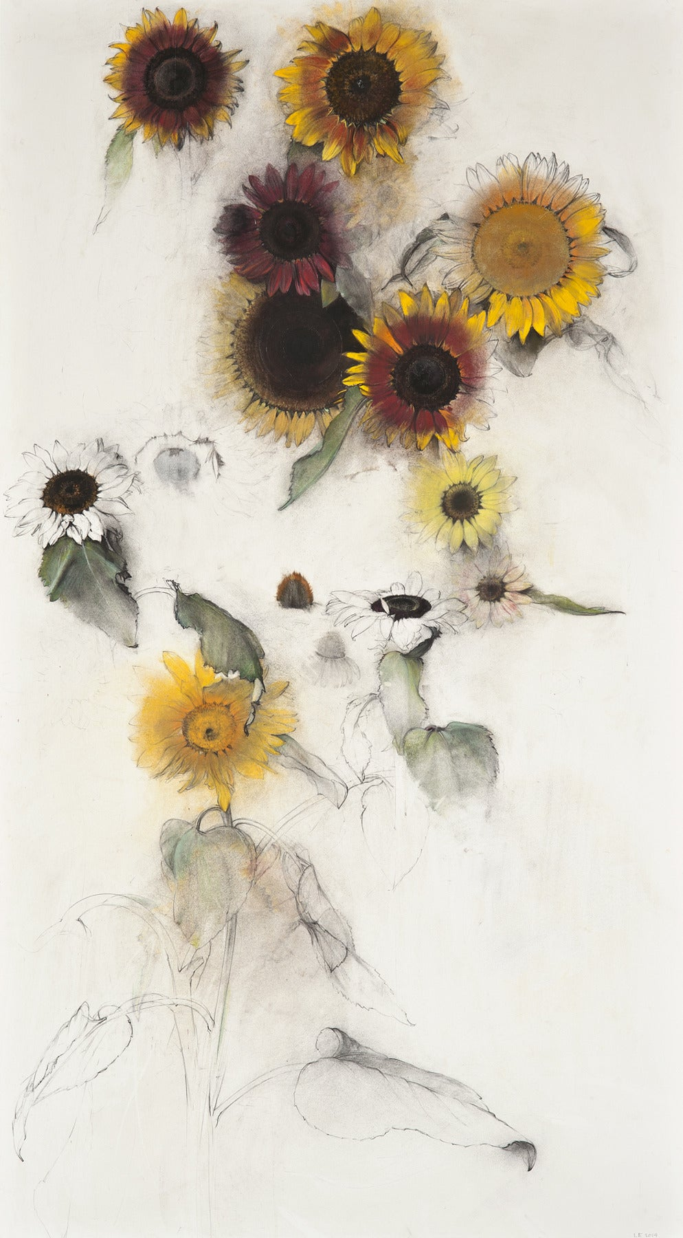 Pat's Sunflowers