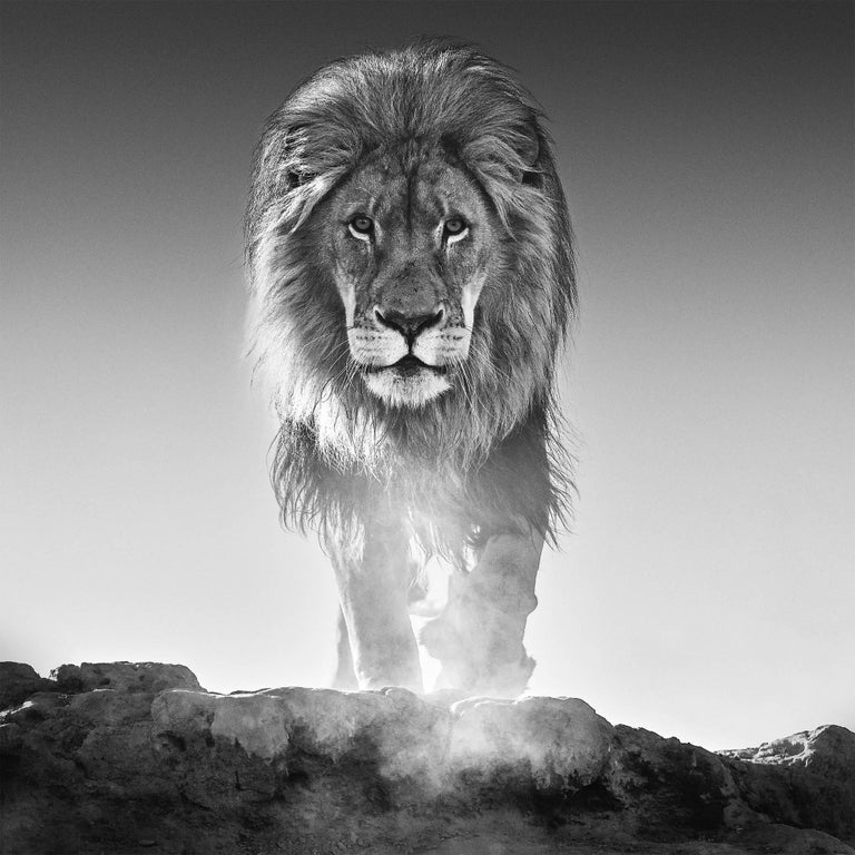 David Yarrow Black and White Photograph - The Old Testament