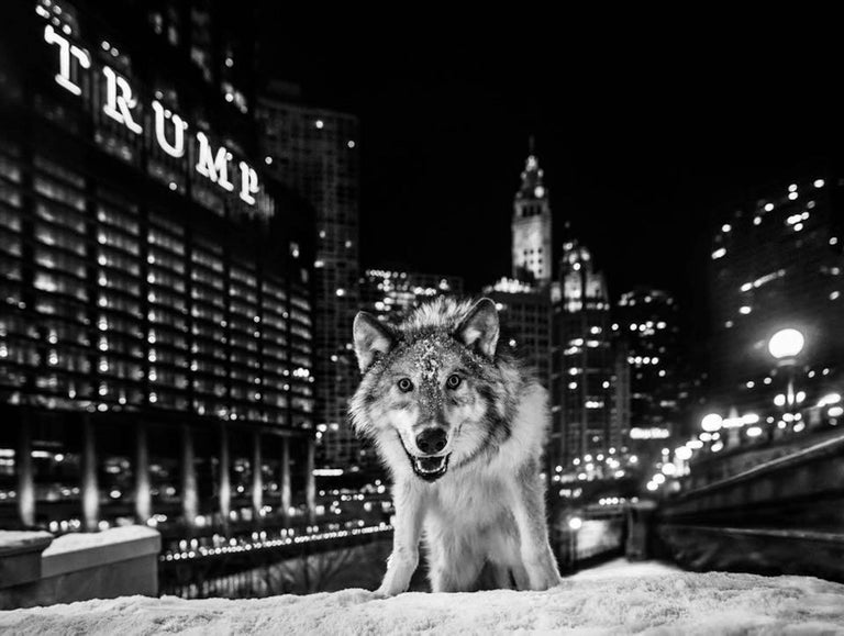 David Yarrow Black and White Photograph - It Is Only a Matter of Time