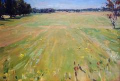 Fields on Cooks Lane