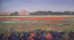 Tuscan Poppy Field